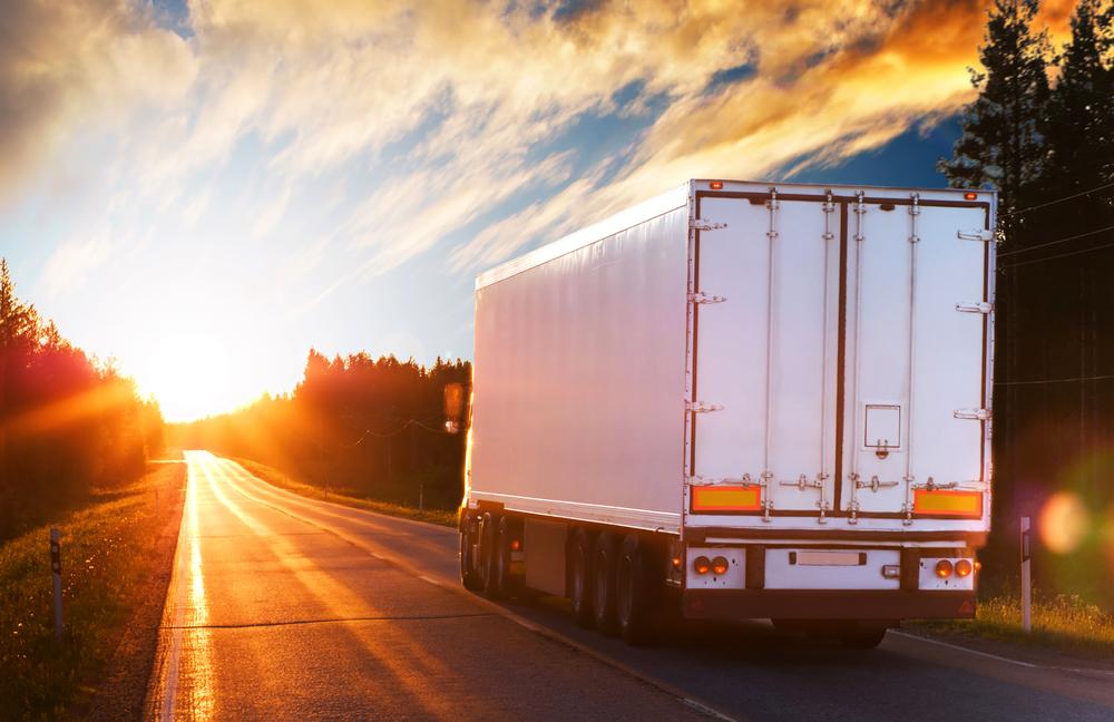 Vrachtwagen met boomstammen kantelt en verspert N44 in Knesselare